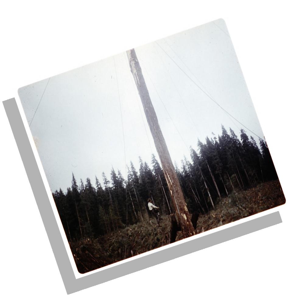 SarichAlbum-57